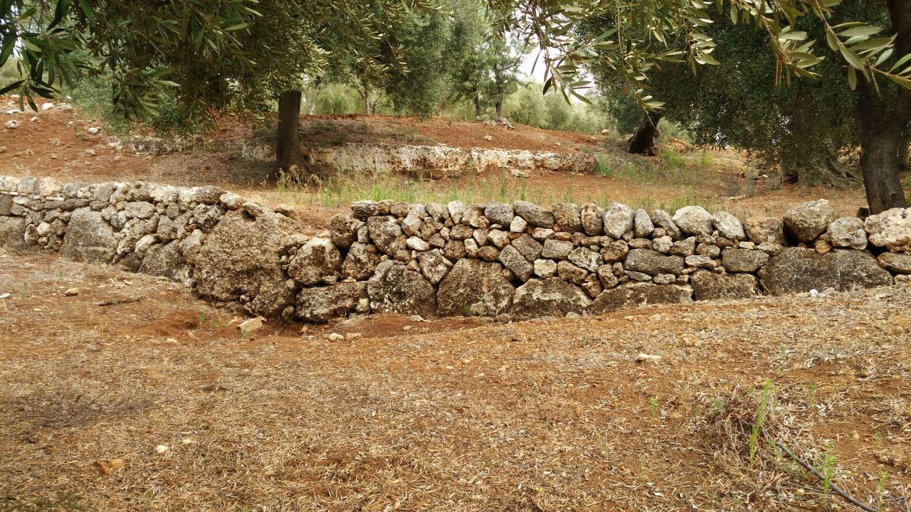 Insediamento-rupestre-Lamacornola-Ostuni-Brindisi-Salento-Puglia-Italia-16