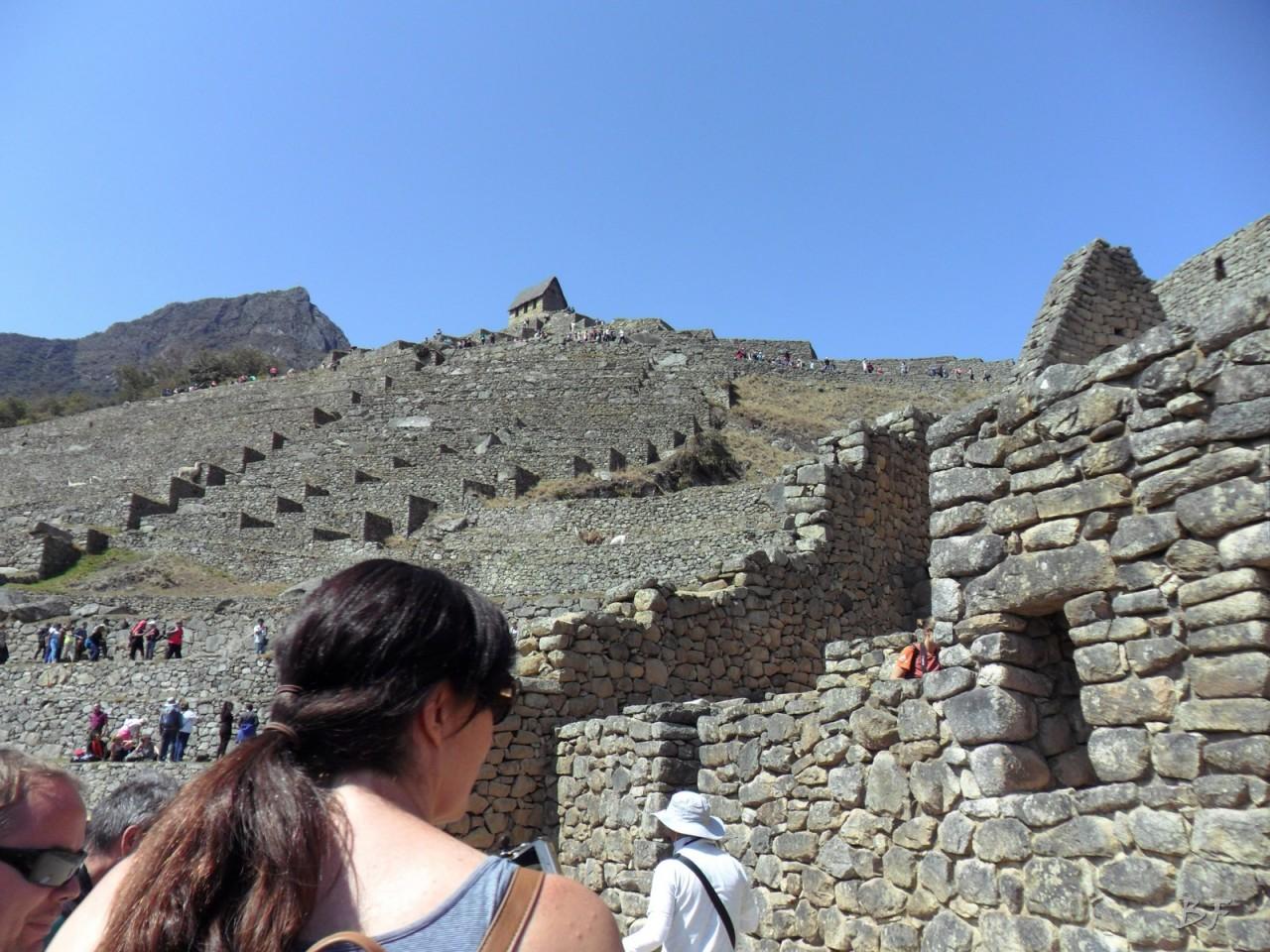 Mura-Poligonali-Incisioni-Altari-Edifici-Rupestri-Megaliti-Machu-Picchu-Aguas-Calientes-Urubamba-Cusco-Perù-23
