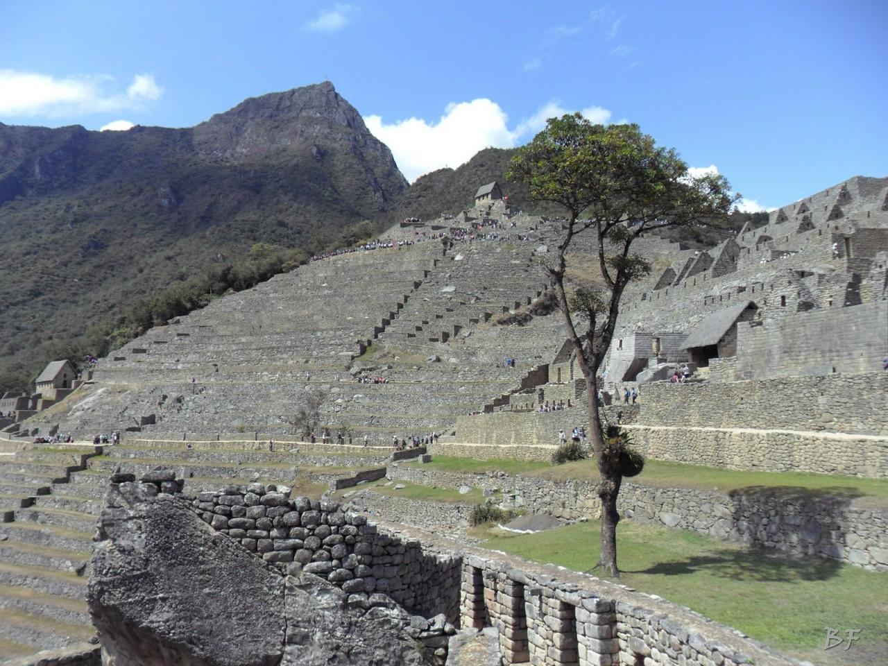 Mura-Poligonali-Incisioni-Altari-Edifici-Rupestri-Megaliti-Machu-Picchu-Aguas-Calientes-Urubamba-Cusco-Perù-42