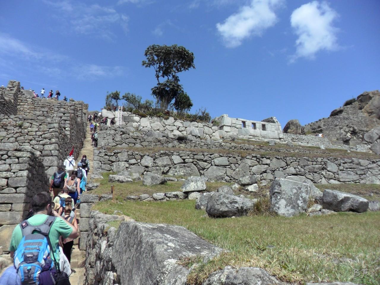 Mura-Poligonali-Incisioni-Altari-Edifici-Rupestri-Megaliti-Machu-Picchu-Aguas-Calientes-Urubamba-Cusco-Perù-49