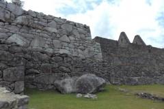 Mura-Poligonali-Incisioni-Altari-Edifici-Rupestri-Megaliti-Machu-Picchu-Aguas-Calientes-Urubamba-Cusco-Perù-126