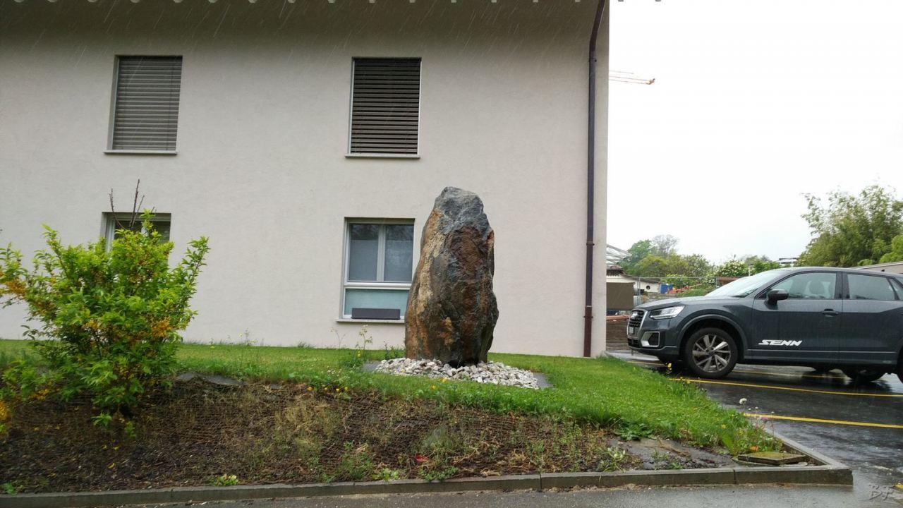 Menhir-Svizzera-1