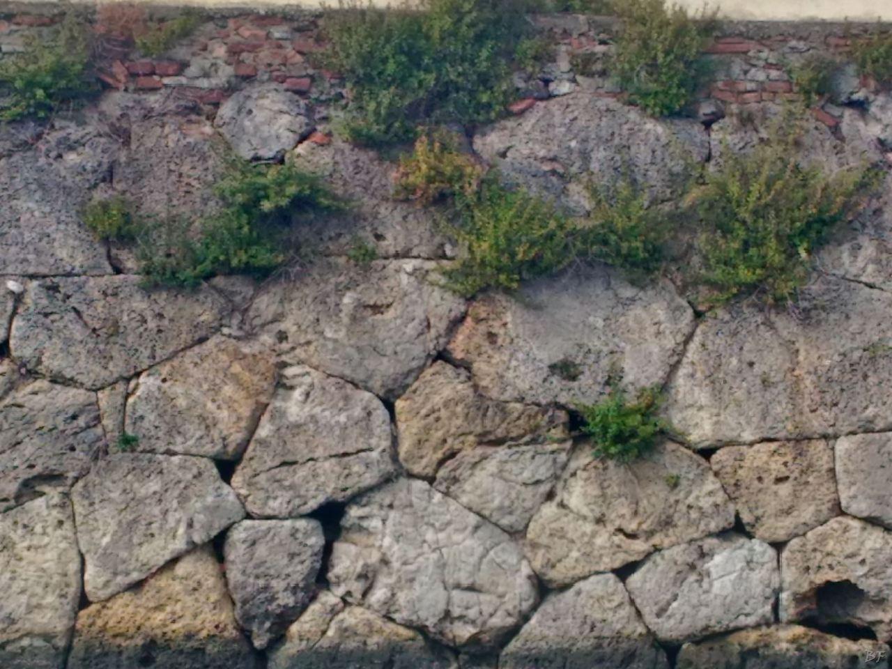 Orbetello-Mura-Poligonali-Megalitiche-Orbetello-Grosseto-Toscana-Italia-5