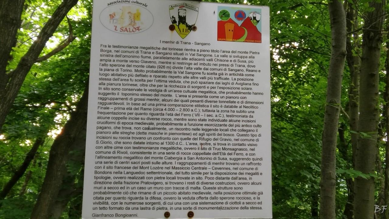 Pietraborga-Torino-Menhir-82