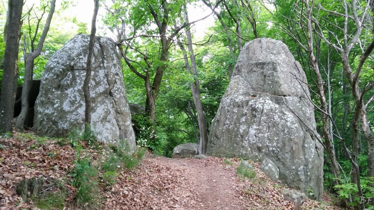 Pietraborga-Torino-Menhir-83