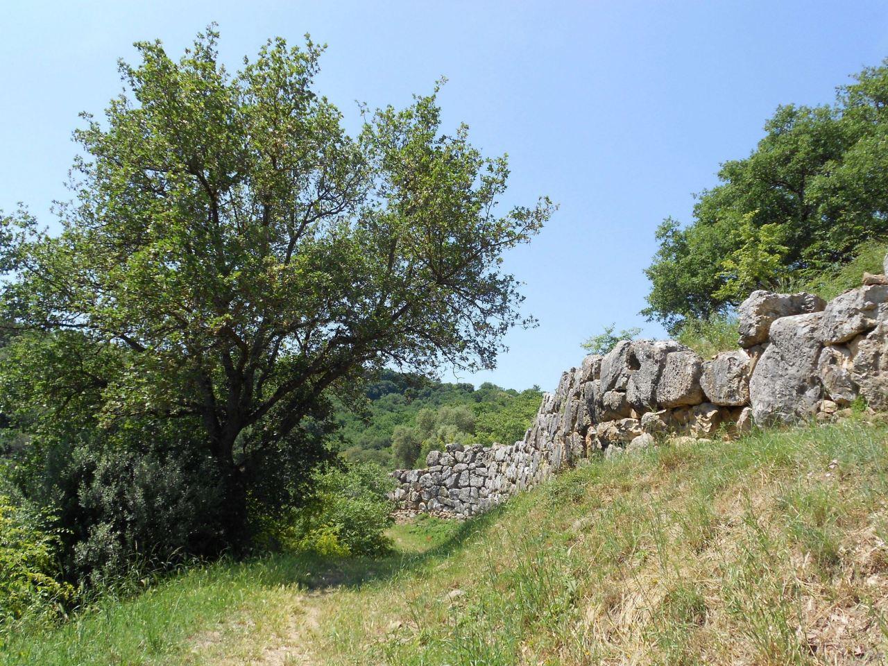 Roselle-Mura-Megalitiche-Roselle-Grosseto-Toscana-Italia-1