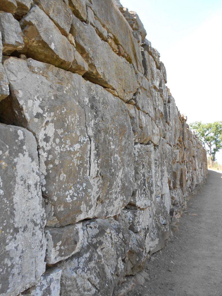 Roselle-Mura-Megalitiche-Roselle-Grosseto-Toscana-Italia-24