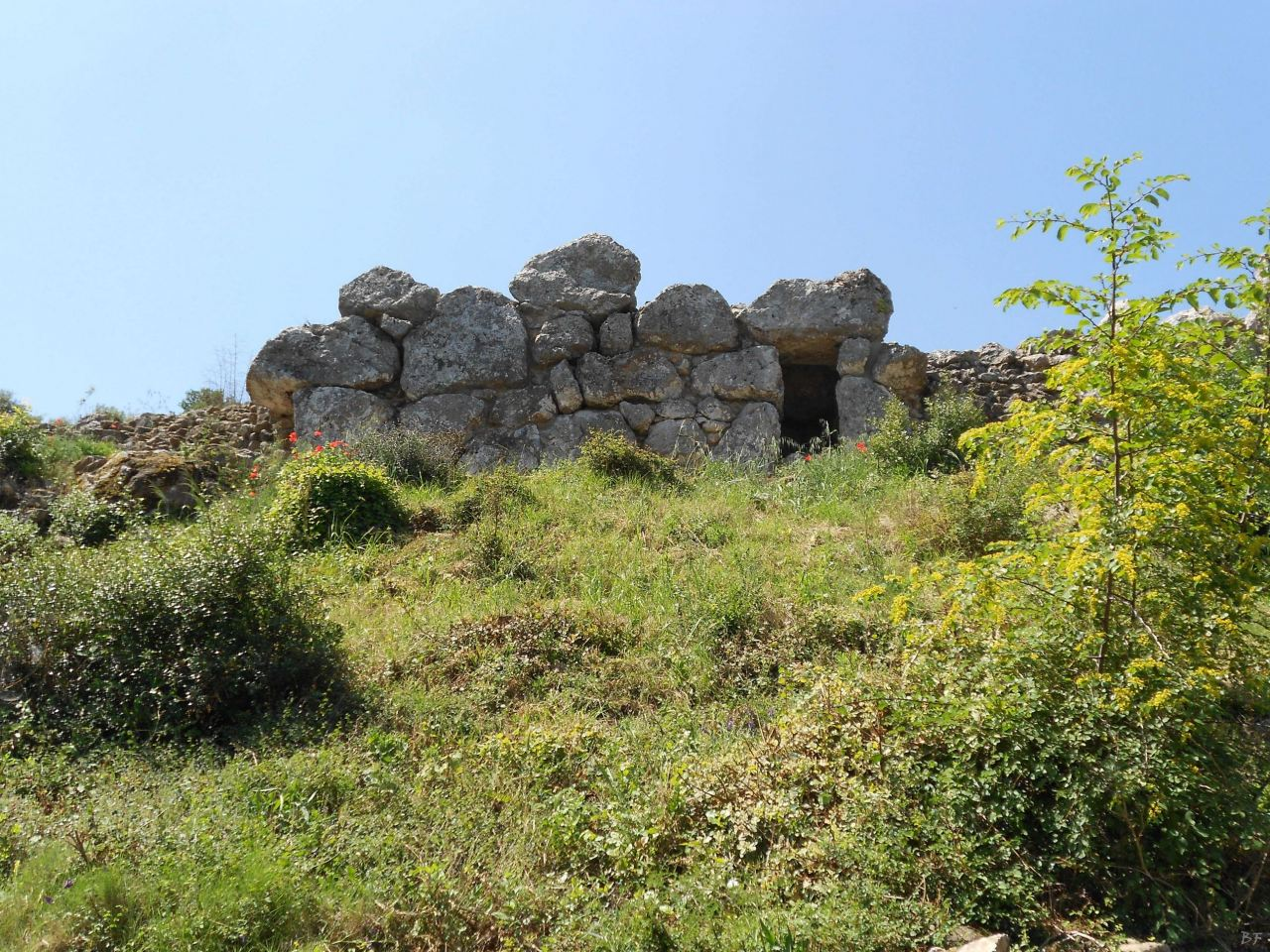 Roselle-Mura-Megalitiche-Roselle-Grosseto-Toscana-Italia-27
