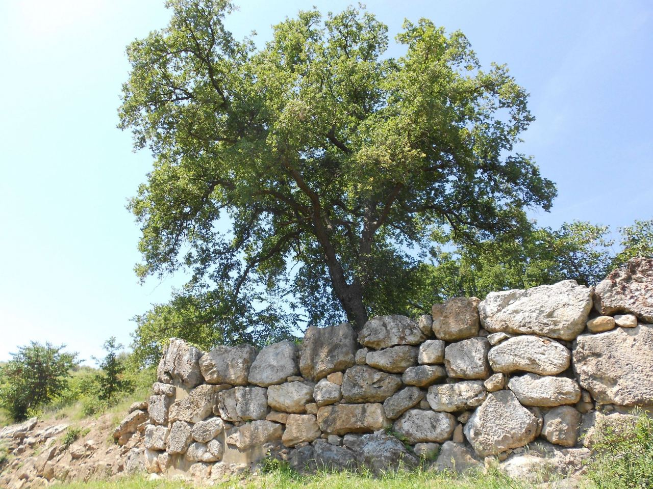 Roselle-Mura-Megalitiche-Roselle-Grosseto-Toscana-Italia-37