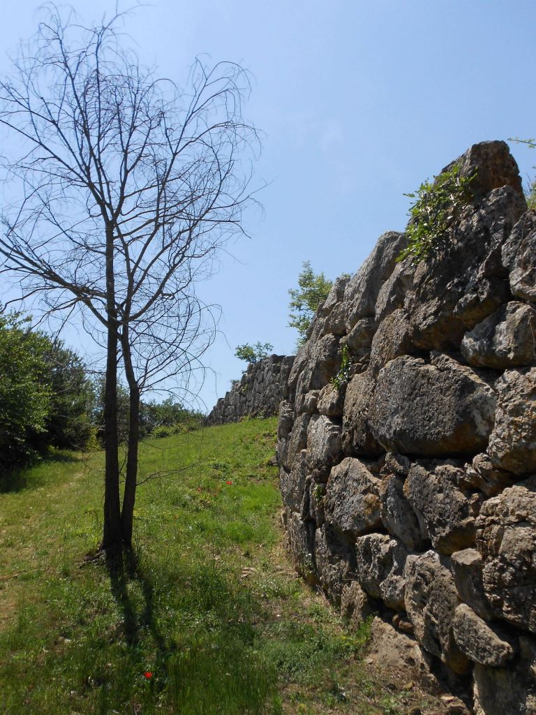 Roselle-Mura-Megalitiche-Roselle-Grosseto-Toscana-Italia-45