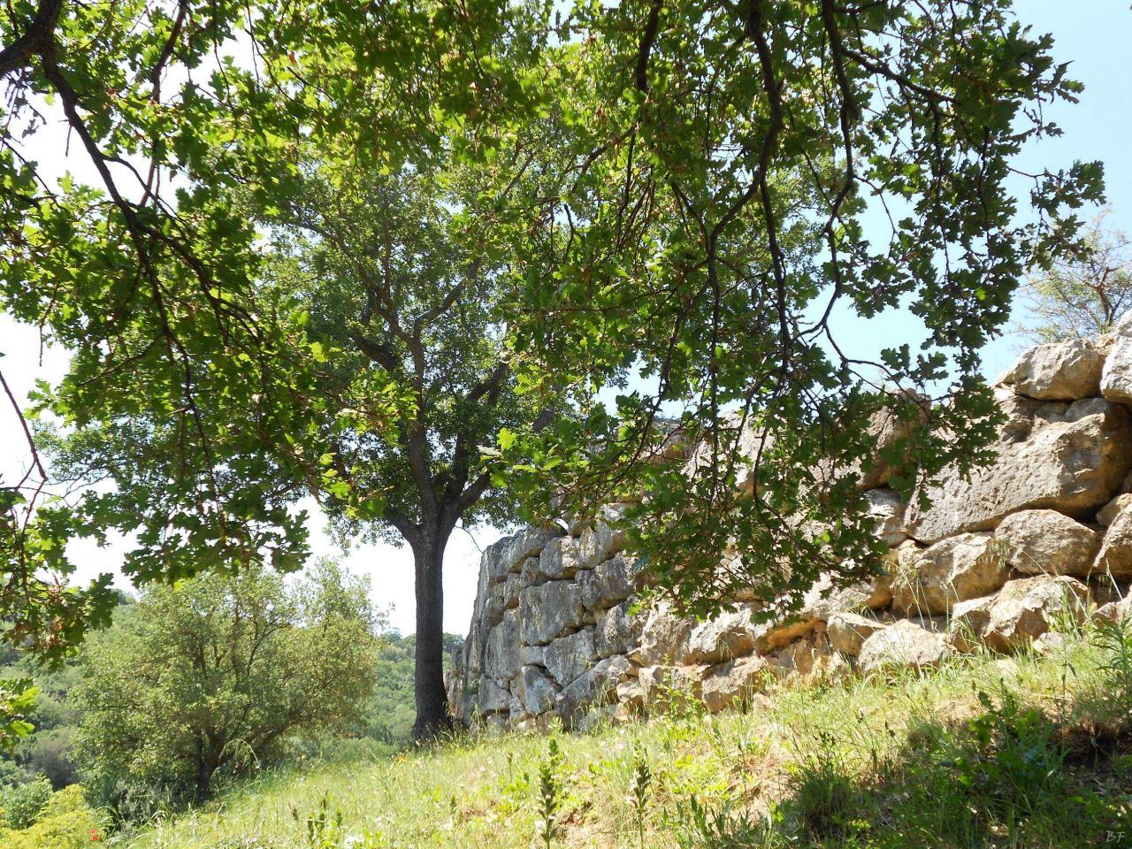Roselle-Mura-Megalitiche-Roselle-Grosseto-Toscana-Italia-50