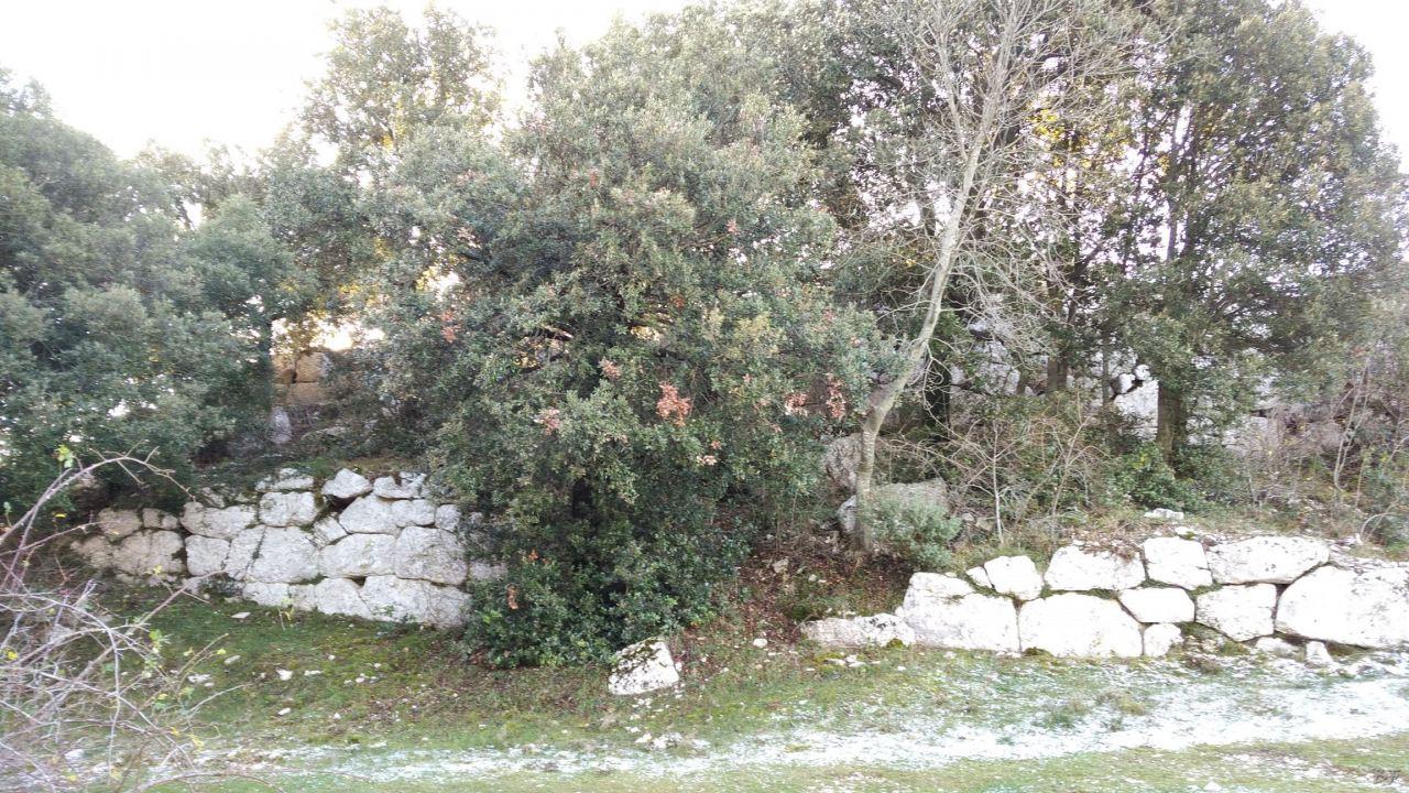 Sant-Erasmo-di-Cesi-Terrazzamento-Poligonale-Megalitico-Terni-Umbria-Italia-19