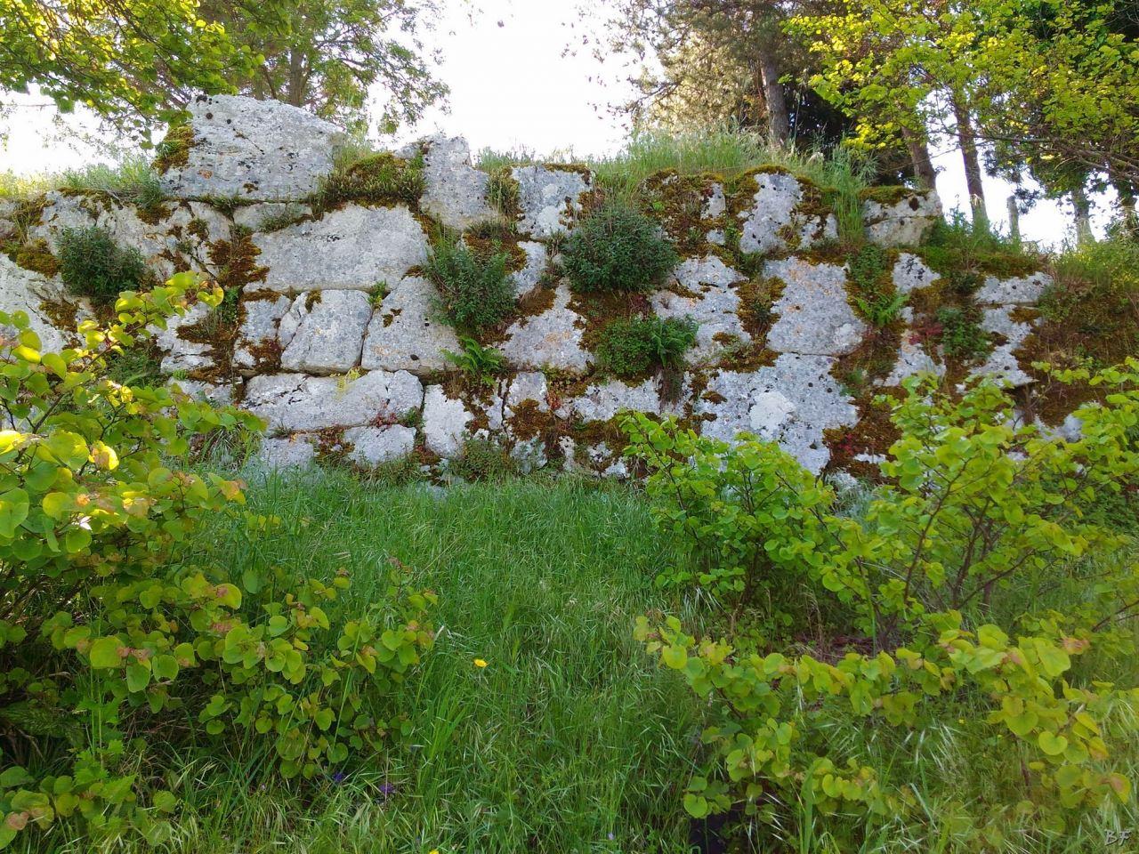Signia-Mura-Poligonali-Megalitiche-Segni-Roma-Lazio-Italia-2
