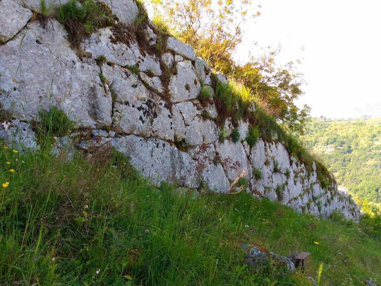 Signia-Mura-Poligonali-Megalitiche-Segni-Roma-Lazio-Italia-5