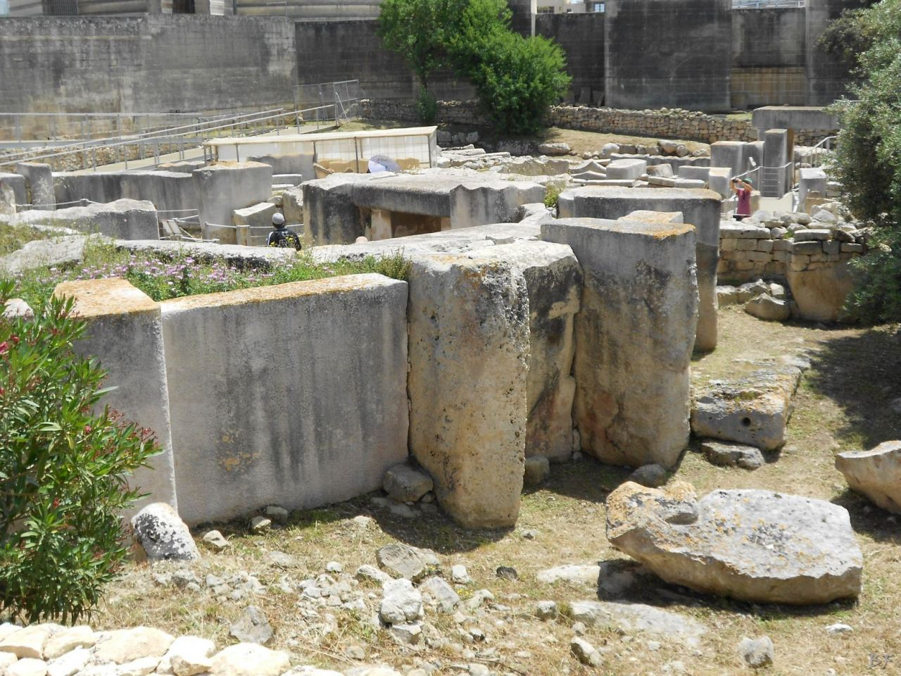 Tarxien-Tempio-Megalitico-Malta-14