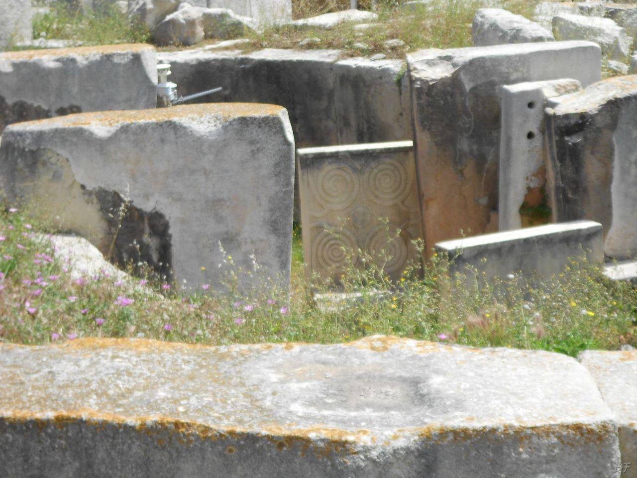 Tarxien-Tempio-Megalitico-Malta-15