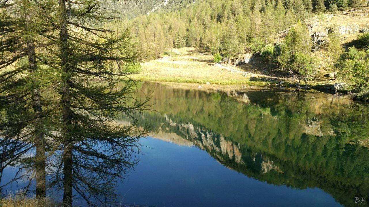 Valle-delle-Meraviglie-Incisioni-rupestri-Tenda-Alpi-Marittime-Francia-10