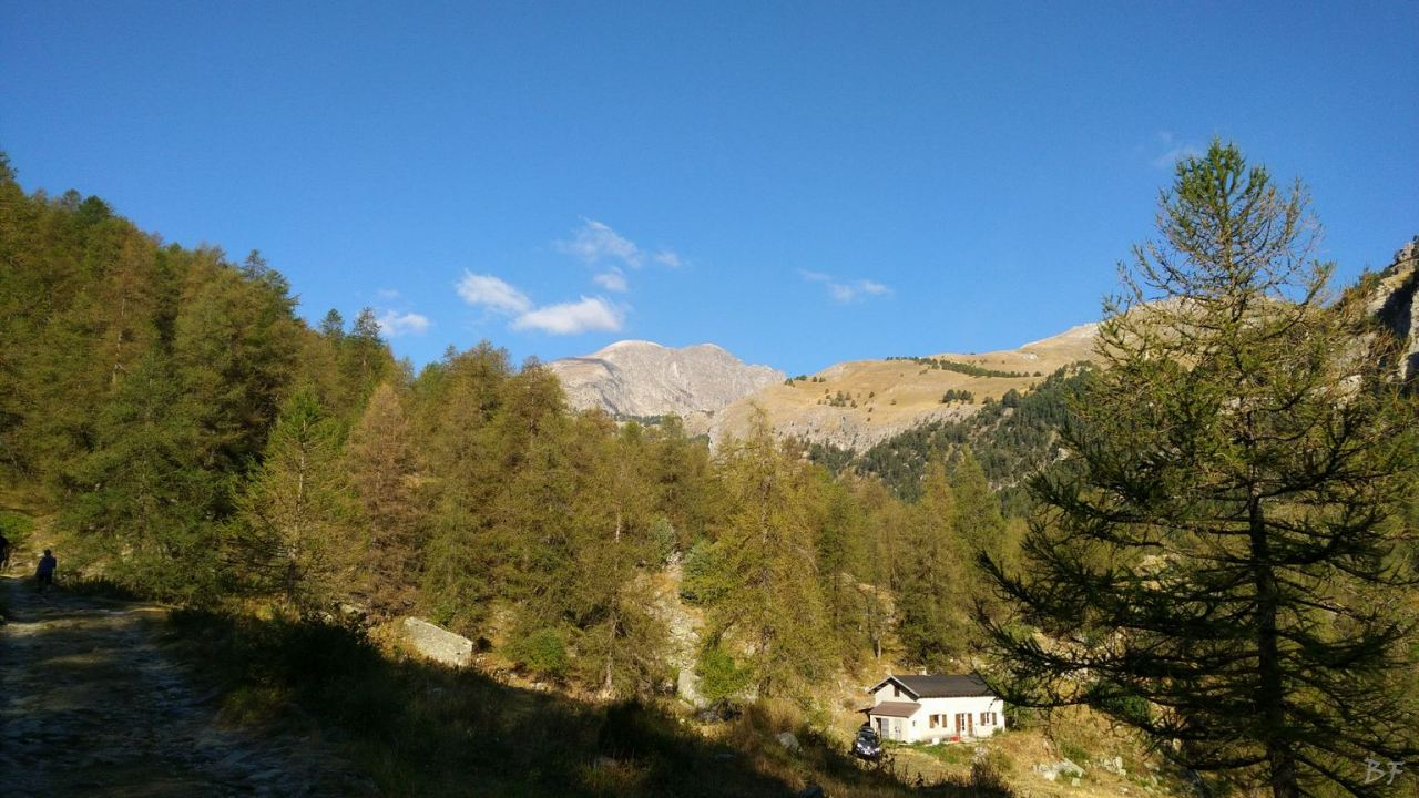Valle-delle-Meraviglie-Incisioni-rupestri-Tenda-Alpi-Marittime-Francia-11