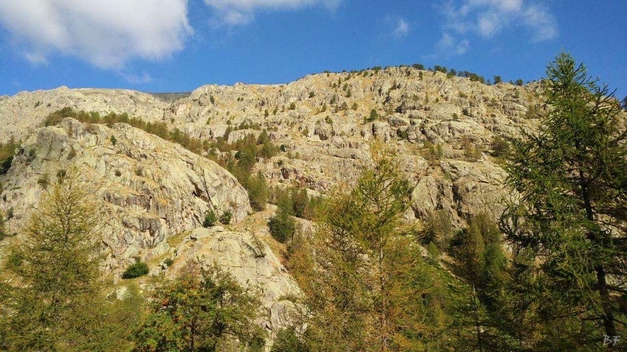 Valle-delle-Meraviglie-Incisioni-rupestri-Tenda-Alpi-Marittime-Francia-16