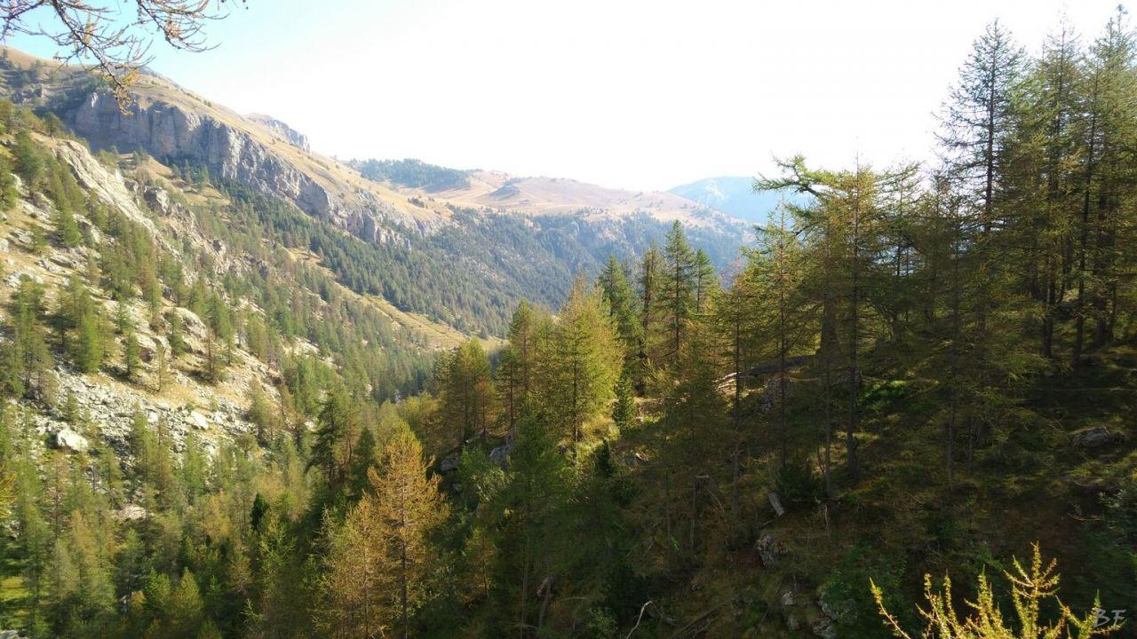 Valle-delle-Meraviglie-Incisioni-rupestri-Tenda-Alpi-Marittime-Francia-17