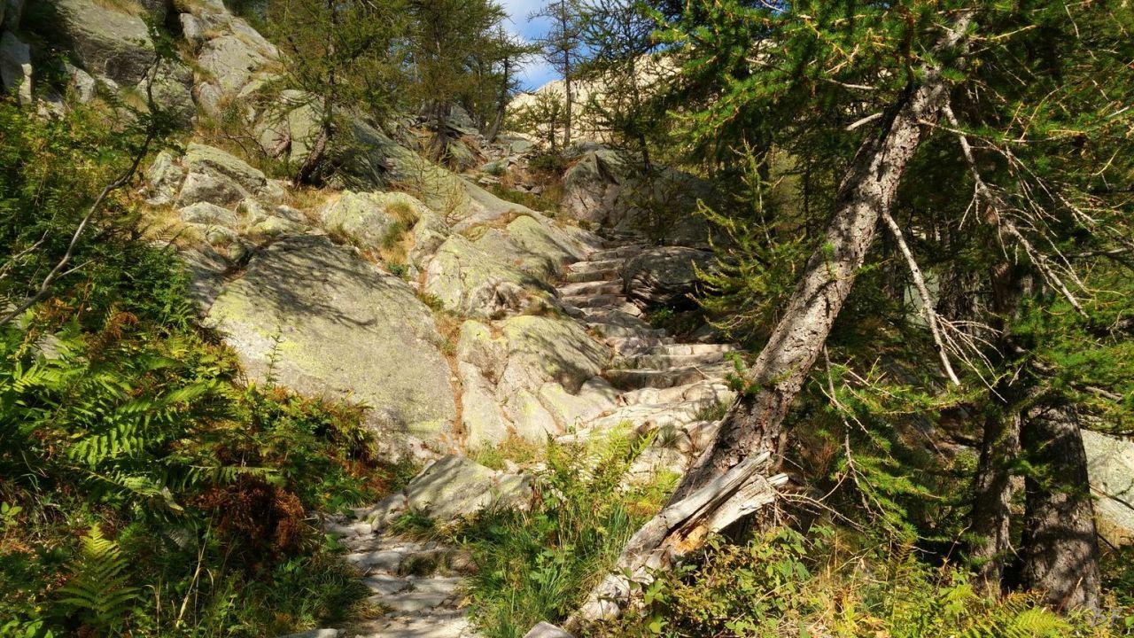 Valle-delle-Meraviglie-Incisioni-rupestri-Tenda-Alpi-Marittime-Francia-18