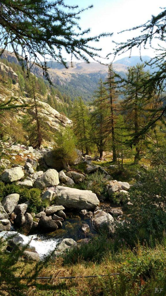 Valle-delle-Meraviglie-Incisioni-rupestri-Tenda-Alpi-Marittime-Francia-19