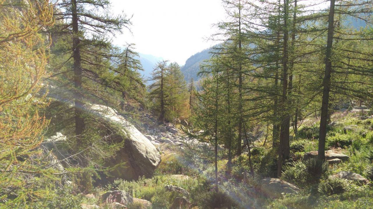 Valle-delle-Meraviglie-Incisioni-rupestri-Tenda-Alpi-Marittime-Francia-20