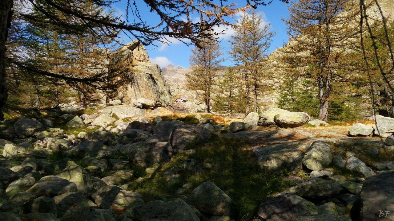 Valle-delle-Meraviglie-Incisioni-rupestri-Tenda-Alpi-Marittime-Francia-24