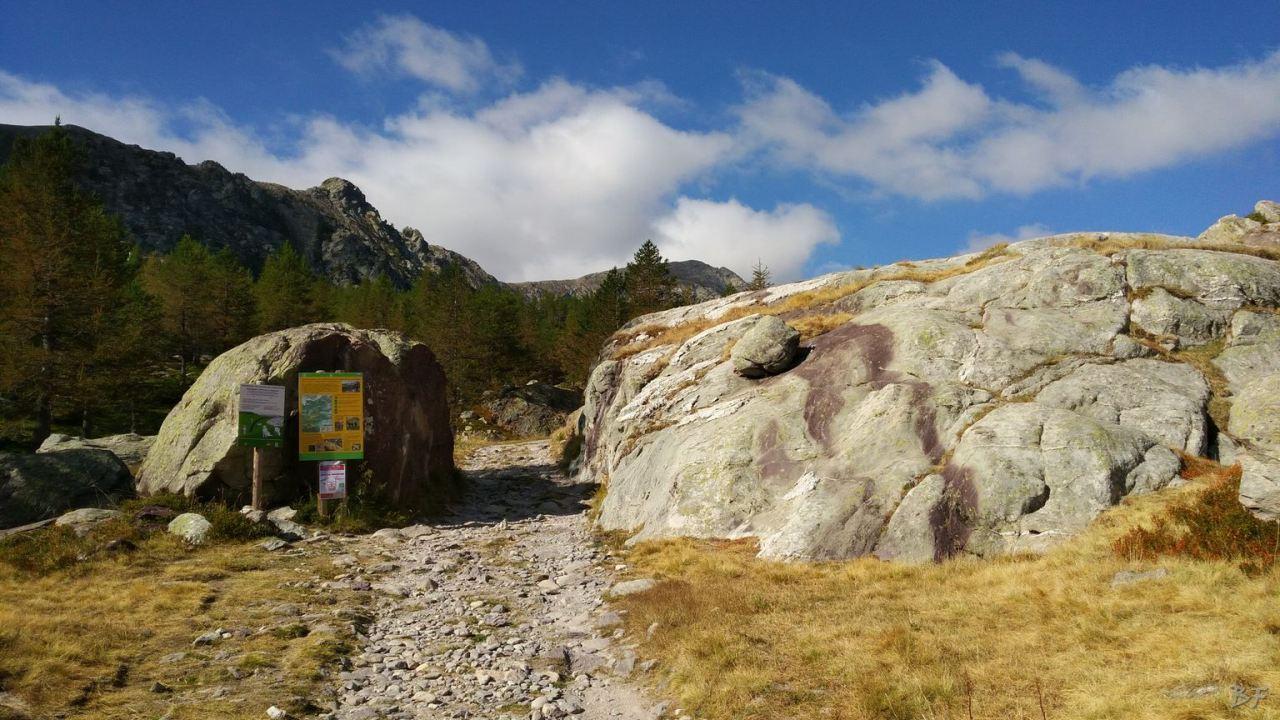Valle-delle-Meraviglie-Incisioni-rupestri-Tenda-Alpi-Marittime-Francia-25