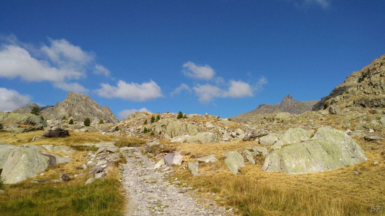 Valle-delle-Meraviglie-Incisioni-rupestri-Tenda-Alpi-Marittime-Francia-30