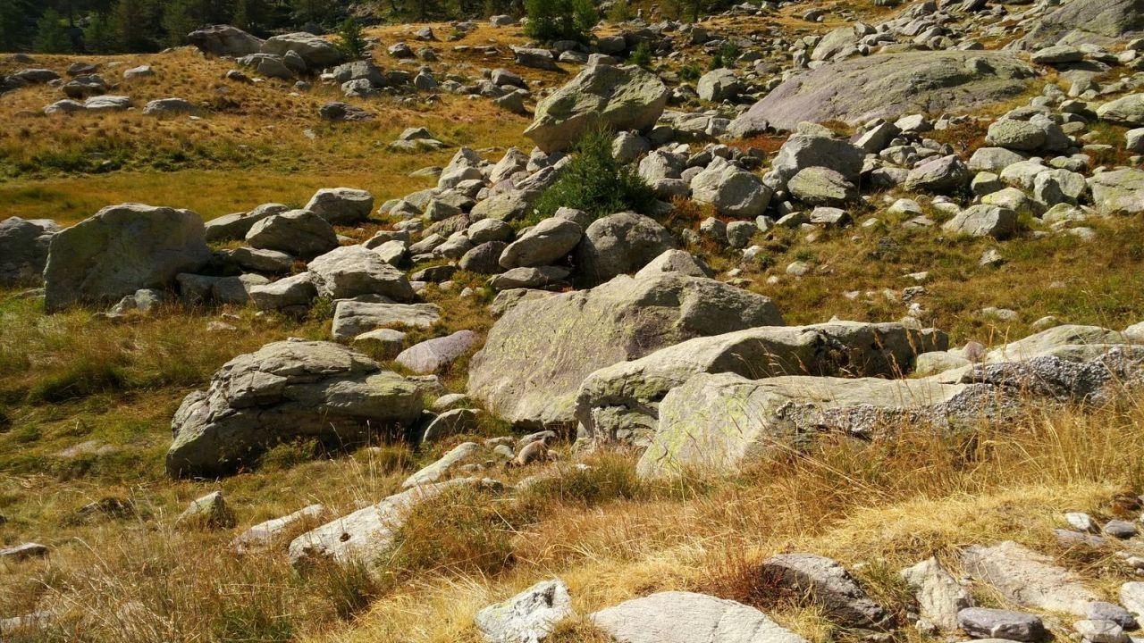 Valle-delle-Meraviglie-Incisioni-rupestri-Tenda-Alpi-Marittime-Francia-31