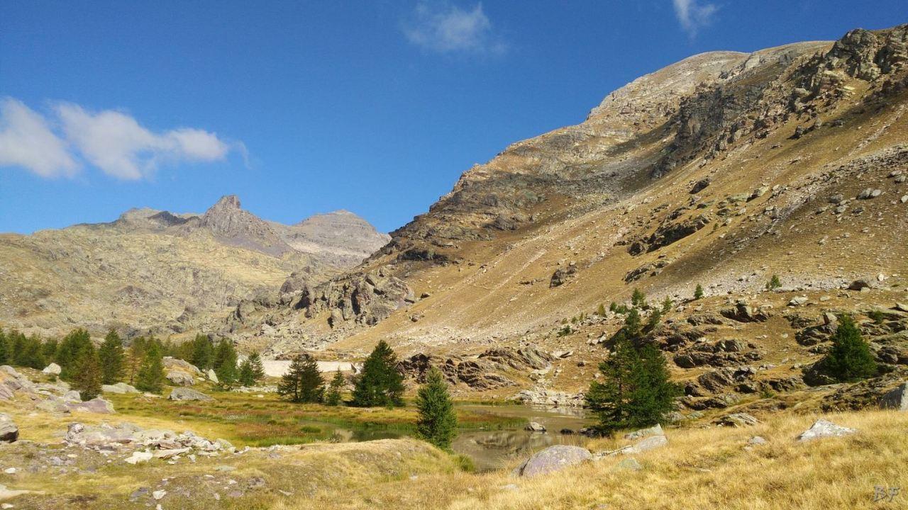 Valle-delle-Meraviglie-Incisioni-rupestri-Tenda-Alpi-Marittime-Francia-33