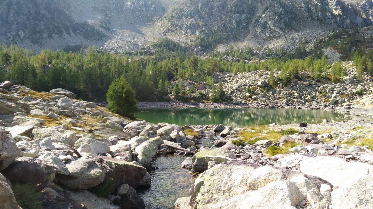 Valle-delle-Meraviglie-Incisioni-rupestri-Tenda-Alpi-Marittime-Francia-34