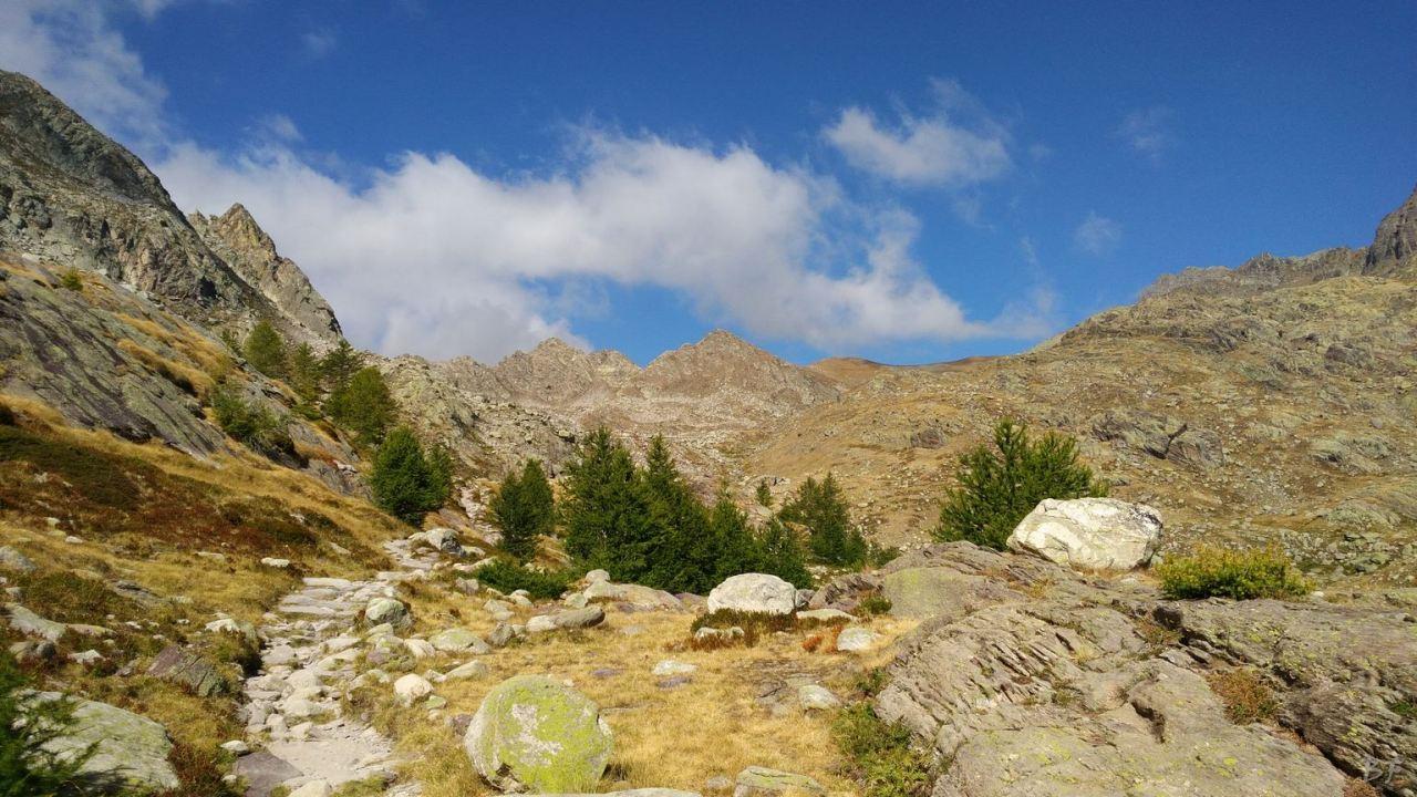 Valle-delle-Meraviglie-Incisioni-rupestri-Tenda-Alpi-Marittime-Francia-39