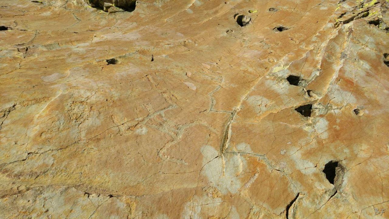 Valle-delle-Meraviglie-Incisioni-rupestri-Tenda-Alpi-Marittime-Francia-47