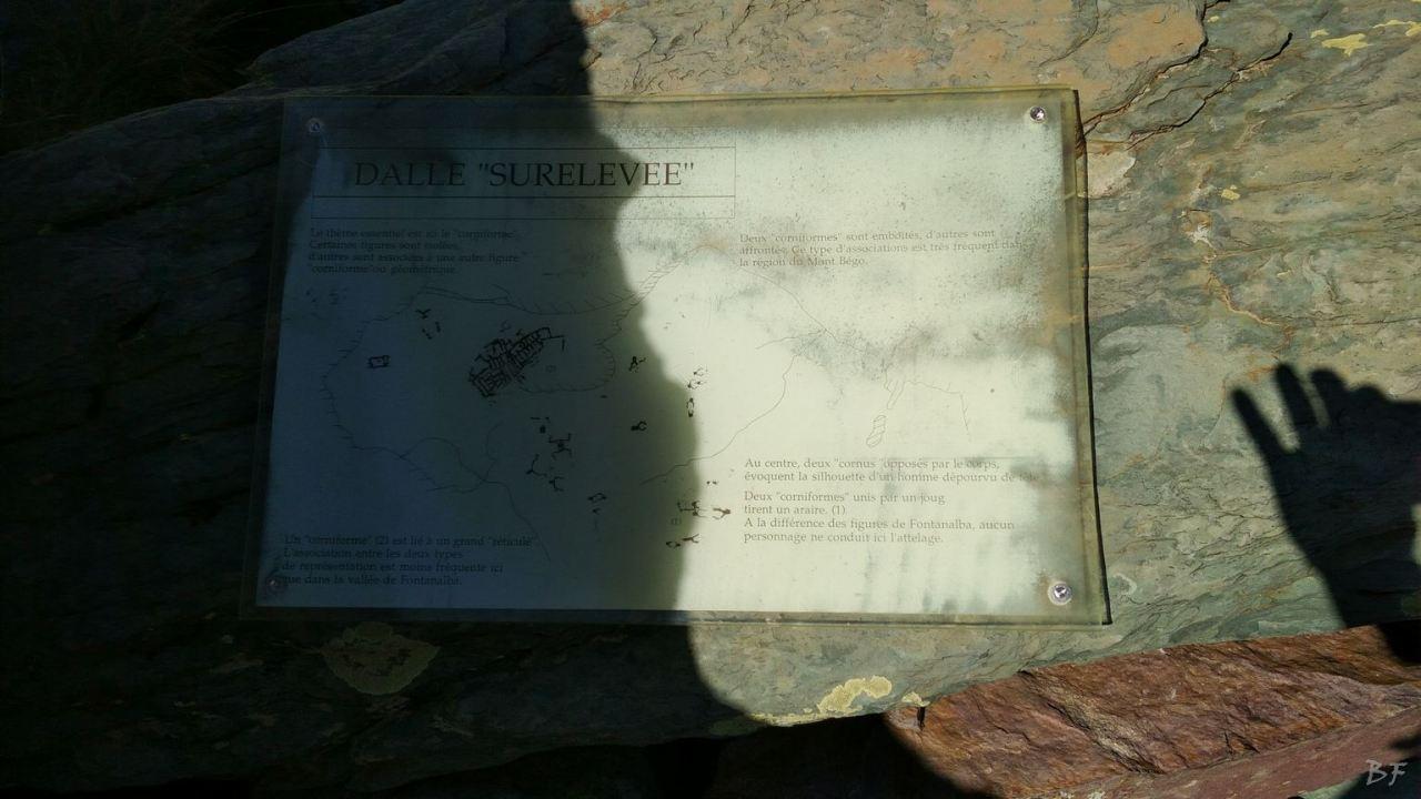 Valle-delle-Meraviglie-Incisioni-rupestri-Tenda-Alpi-Marittime-Francia-50
