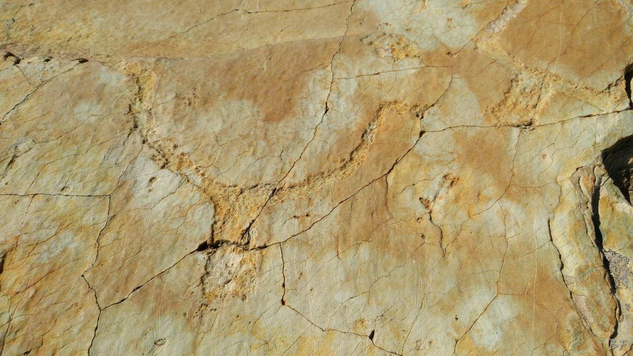Valle-delle-Meraviglie-Incisioni-rupestri-Tenda-Alpi-Marittime-Francia-52