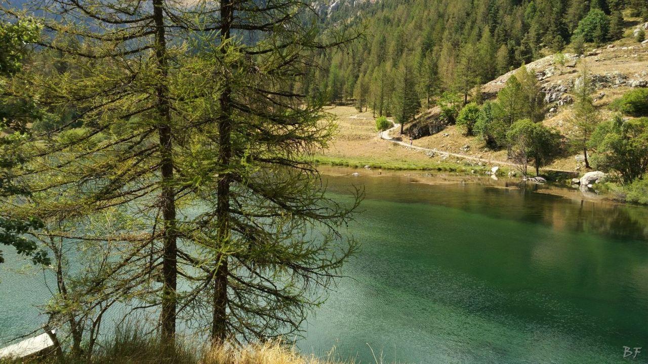 Valle-delle-Meraviglie-Incisioni-rupestri-Tenda-Alpi-Marittime-Francia-93