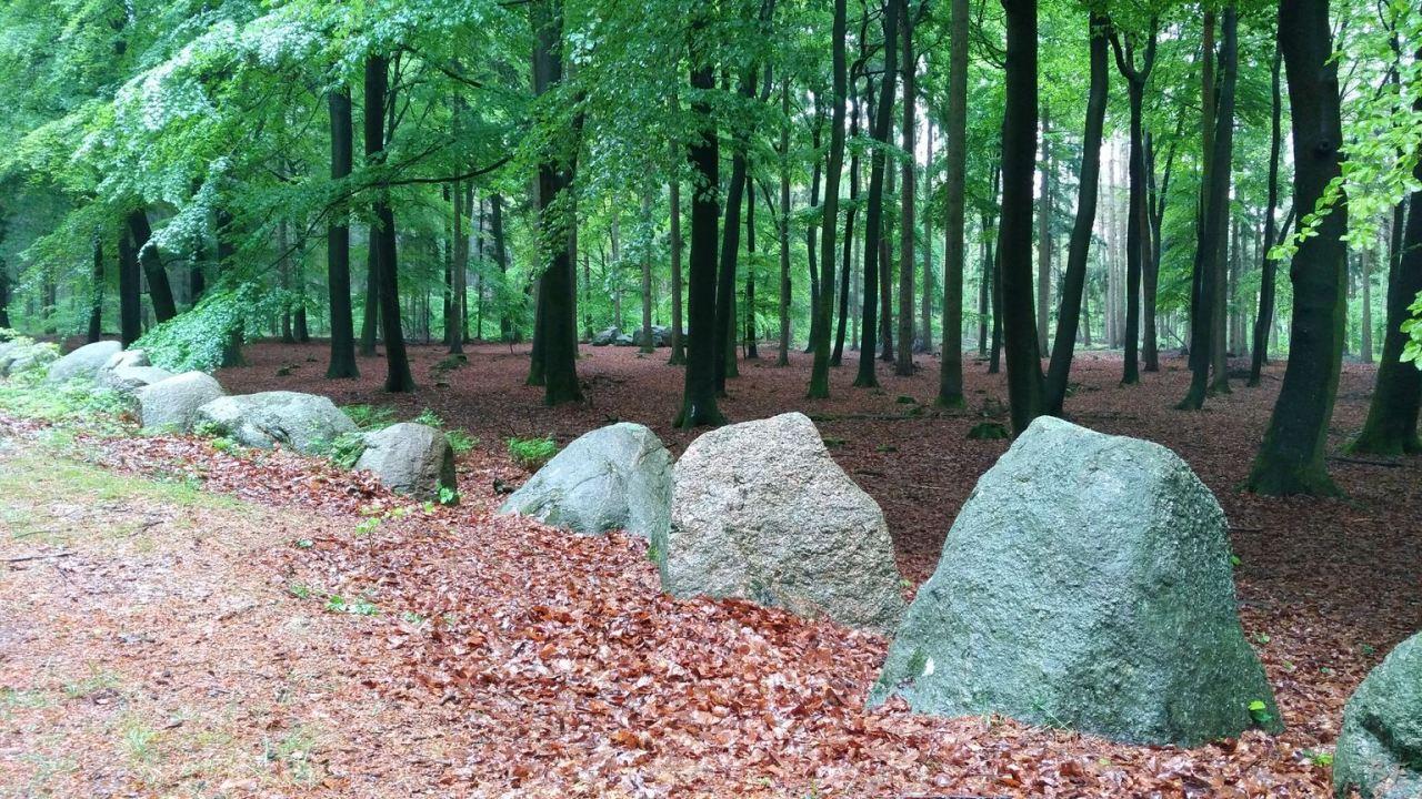 Cromlech-Visbeker-Brautigam-Visbek-Bassa-Sassonia-Germania-6