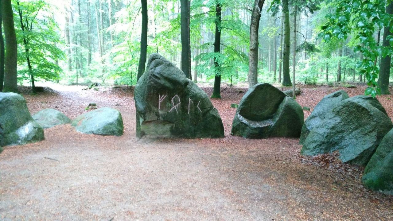 Cromlech-Visbeker-Brautigam-Visbek-Bassa-Sassonia-Germania-7