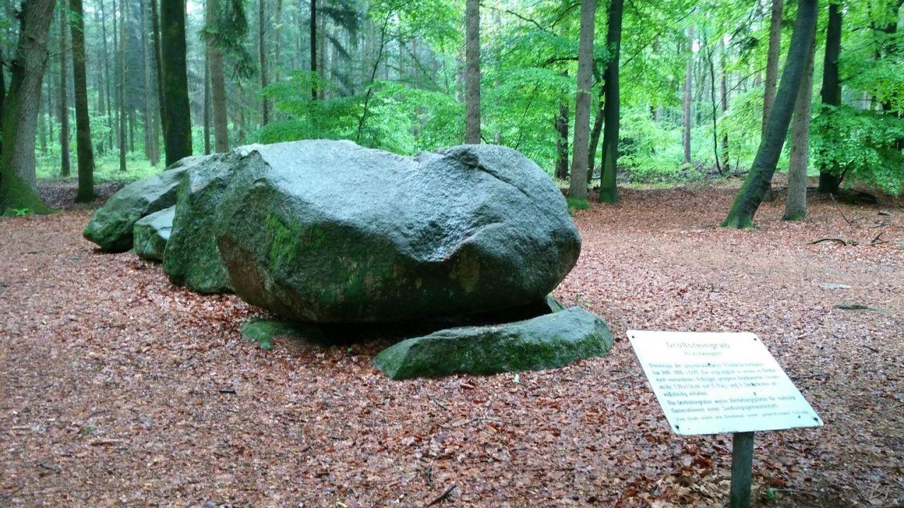 Cromlech-Visbeker-Brautigam-Visbek-Bassa-Sassonia-Germania-9